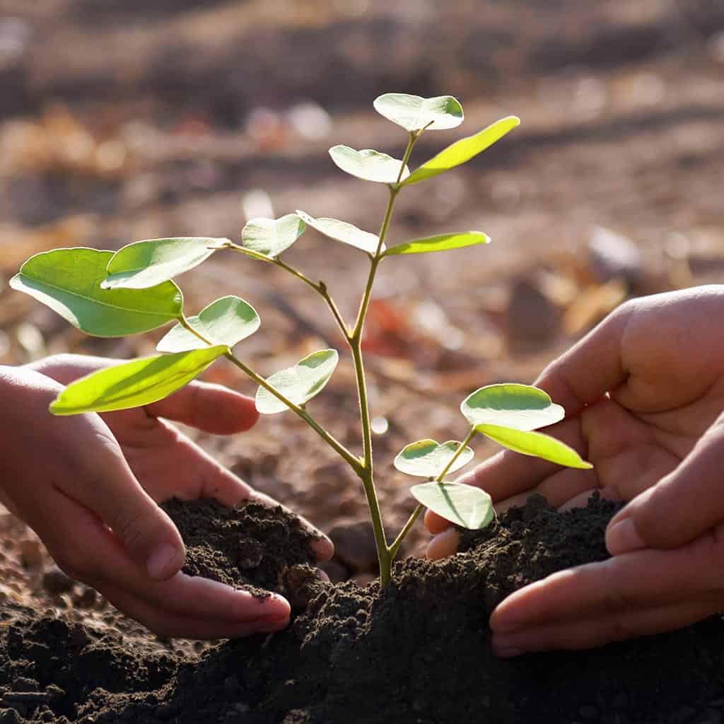 Ochrona środowiska - audyty